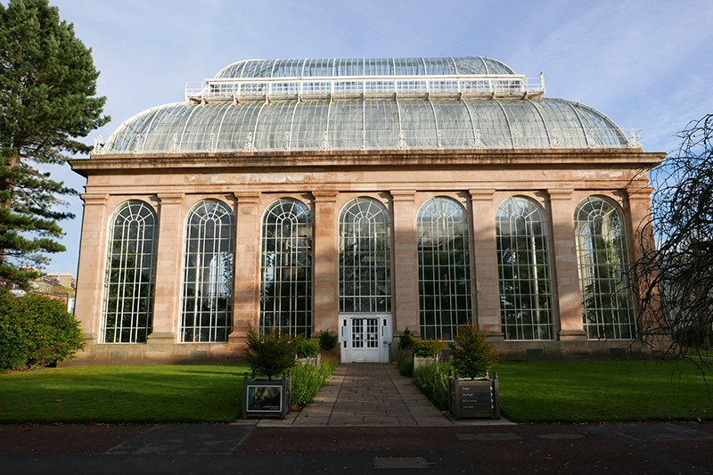 The Tropical Palm House was built in 1834 at a cost of £1500.